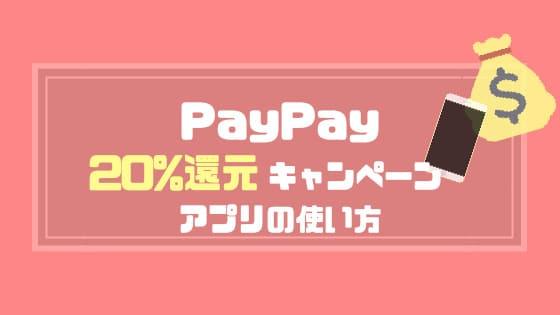 PayPay20%還元