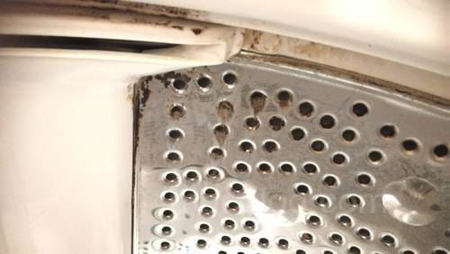取り切れない洗濯槽の汚れ