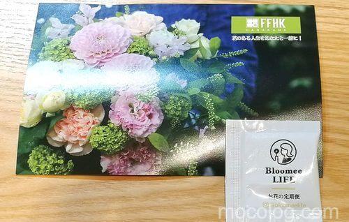 お花屋さんのポストカードと栄養剤
