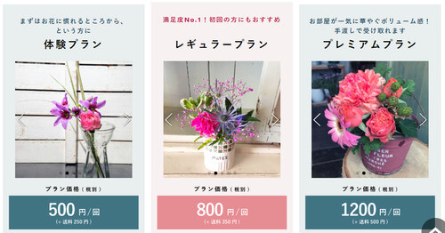BloomeeLIFE料金プラン
